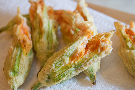 crab stuffed flowers stuffed crab stuffed zucchini flowers recipes