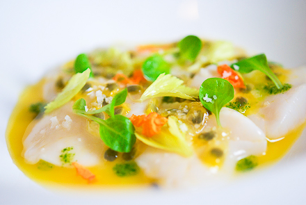 scallop-crudo-71
