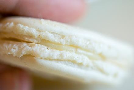 white-truffle-macarons-4