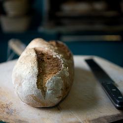 Bread Inspiration from a Master Baker