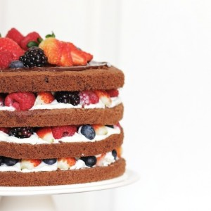 Chocolate Genoise with Berries