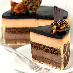 Peanut Butter - Milk Chocolate Entremet Cake