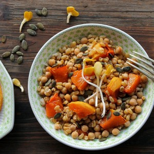 Wheat, pumpkin and chickpeas salad